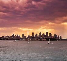 Sydney Panoramic by Tim Luczak