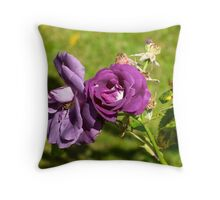 The Rose of Tralee Throw Pillow
