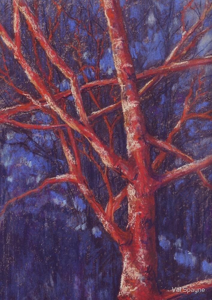 Strensall Common Tree by Val Spayne