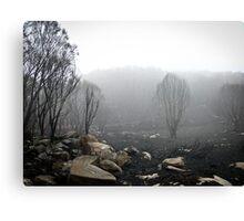 Disaster, Destruction, Desolation Canvas Print