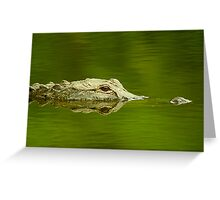 """""""Reflective Eyes"""" - alligator in the Florida Everglades Greeting Card"""