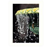 Fountain Splash II Art Print