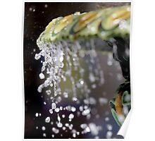 Fountain Splash III Poster