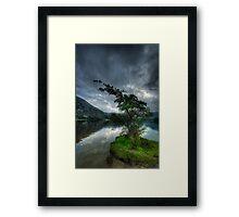 Ullswater Tree Framed Print