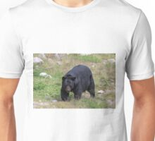 A lone, large black bear Unisex T-Shirt