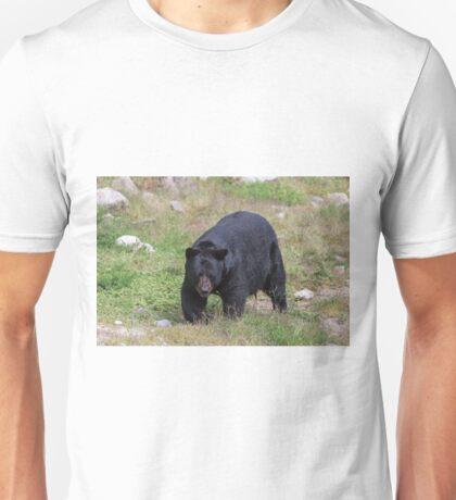 A lone, large black bear Unisex T-Shirt