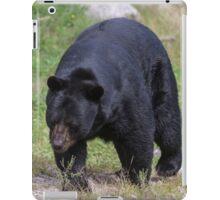 A large Black Bear iPad Case/Skin
