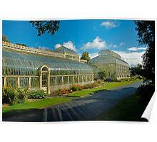 Botanic House Poster