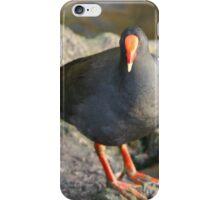 Swamp Hen iPhone Case/Skin