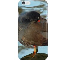 Swamp Hen Preening iPhone Case/Skin