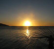 Fijian sunset by Neil Crittenden