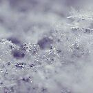 flakes by Angel Warda