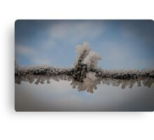 Frost Clinging To Barbed Wire Canvas Print