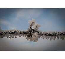 Frost Clinging To Barbed Wire Photographic Print