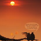 love bats admiring the sunset! by VallaV