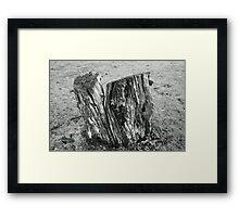 Tree Stump - Black And White Framed Print