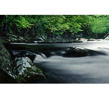 Riverbank in the Great Smoky Mountains Photographic Print
