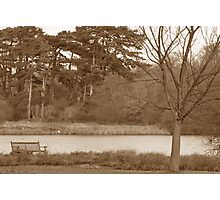 Lonely bench Photographic Print
