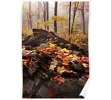 New England Autumn Forest Scene Poster