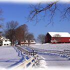Pastoral Winter Wonder by Wes Clemmer