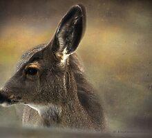 Come To My Window by Kay Kempton Raade