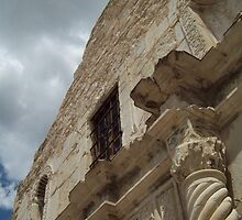 Old and Proud - The Alamo by Danielle Ducrest