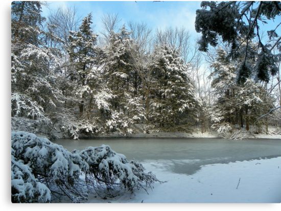Snow Storm almost gone, Blue Skies ahead Arkansas by David  Hughes