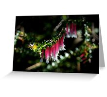 Nature's Bells Greeting Card