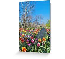 Floriade Tulips Greeting Card