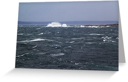 The Wild Atlantic by Jann Ashworth