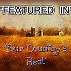 Your Country's Best banner challenge by vigor