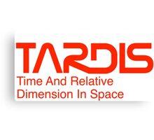 NASA Worm Logo TARDIS Canvas Print