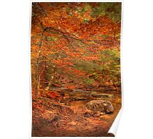 Just Above Oneida Falls Poster