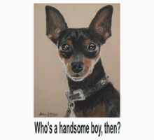 Who's a handsome boy, then? by Hilary Robinson