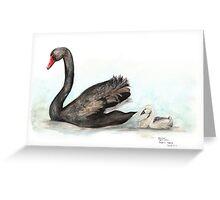 Black Swan and Cygnet Greeting Card