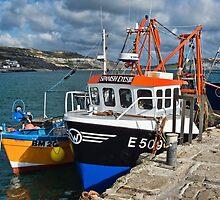 Crowded Wharf ~ Lyme Regis by Susie Peek