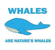 Whales Are Nature's Whales Photographic Print
