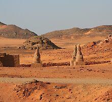 Avenue of Sphinxes at Wadi el Seboa  by Laurel Talabere