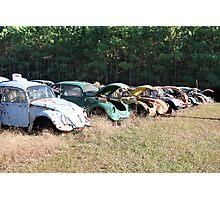 Volkswagen Beetle Graveyard Photographic Print