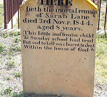 In Memory of Sarah Lane by Margaret  Hyde