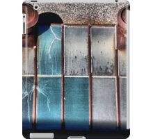 Looking Glass iPad Case/Skin