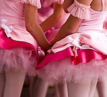 Little Pink Tutus by Denice Breaux