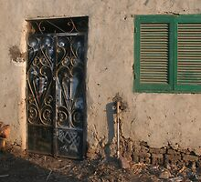 Door and Shuttered Window by Laurel Talabere