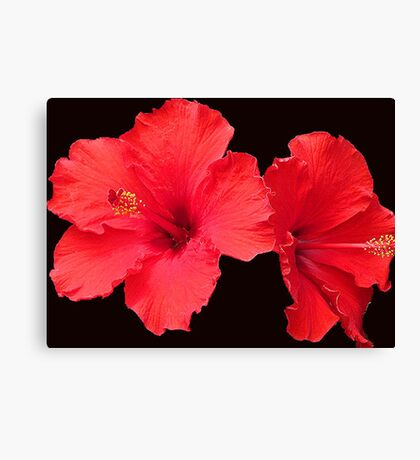 Wickedly Red Canvas Print