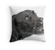 ~Harried Hemi Hound~ Throw Pillow
