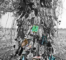 Shoe Tree by Debbie Lucas