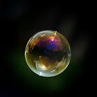 """World in a Bubble"" by Sophie Lapsley"