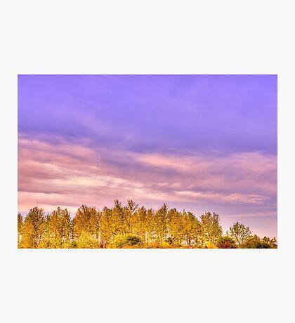 """Magnuson Sunset"" Photographic Print"