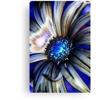 Daisy Abstract IV Canvas Print