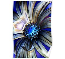 Daisy Abstract IV Poster